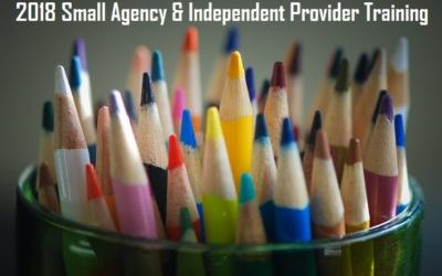 3/2/2018 Annual Small Agency and Independent Provider Training