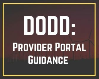 DODD: Instructions for the Provider Portal